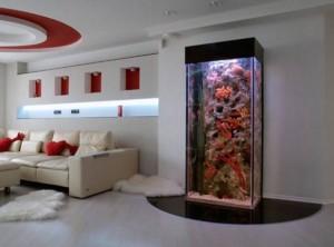 vibor mesta i ustanovka akvariuma